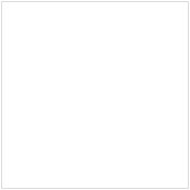 Freak Muscle Program